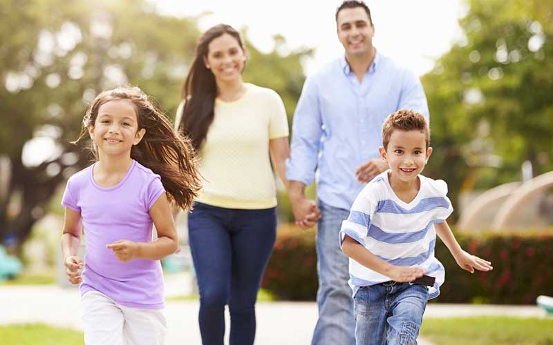 What is a Family's wellbeing and what are its Six Elements?